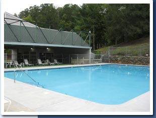 Bear Paw Resort Olympic sized pool photo